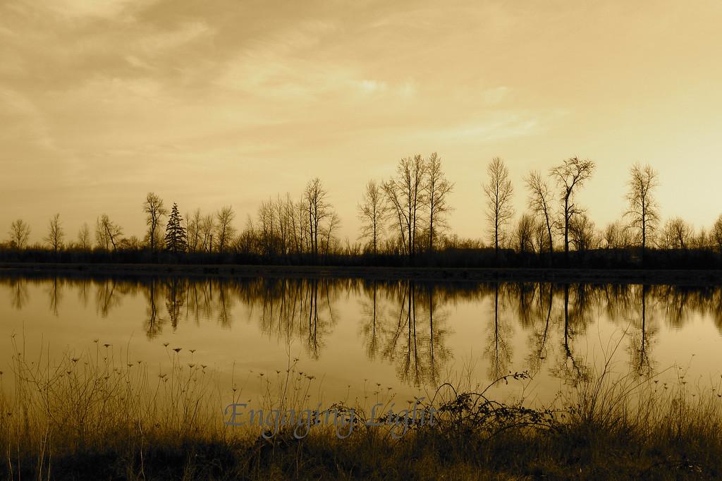 Ankeny Wildlife Refuge, Oregon