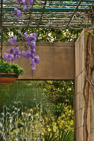 Dallas Arboretum-14