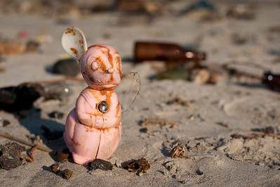 Toy Mouse, Dead Horse Bay