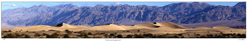 Death Valley 2009