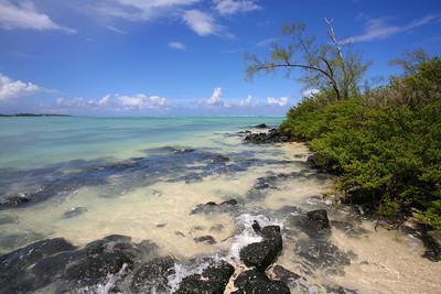 23.01.2008, Mauritius. Ein Strand auf der Ile aux Cerfs.