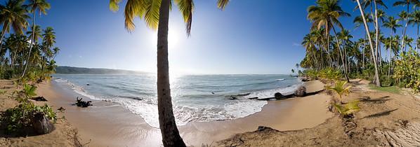 11.03.2013, Dominikanische Republik, Halbinsel Samana, Ort: Las Terrenas. Kokospalmen am Strand -Playa Bonita-.