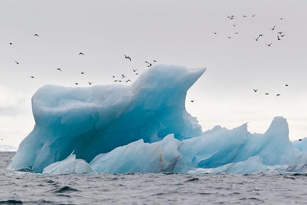 BT- Ice Nr. 42-33610635