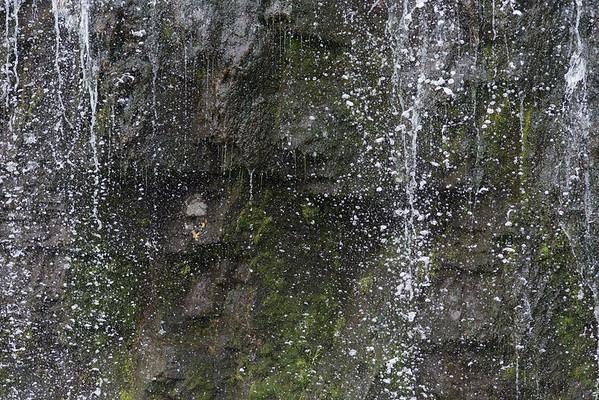 BT_Wasserfall Nr.