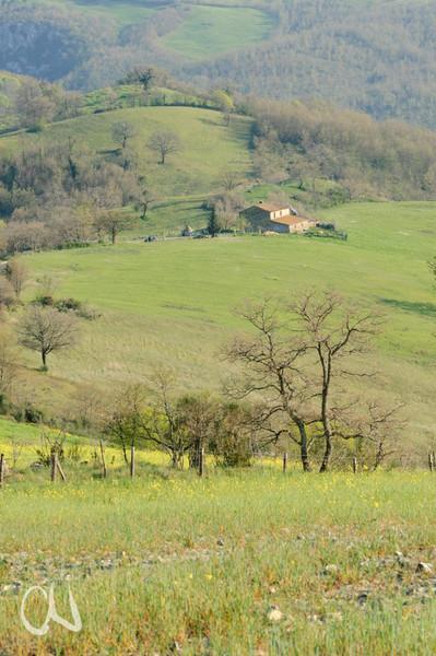 Bauernhof in der Toskana bei Roccalbegna, landscape in Roccalbegna, souther Tuscany, Italy, Landschaft, Maremma, Toskana