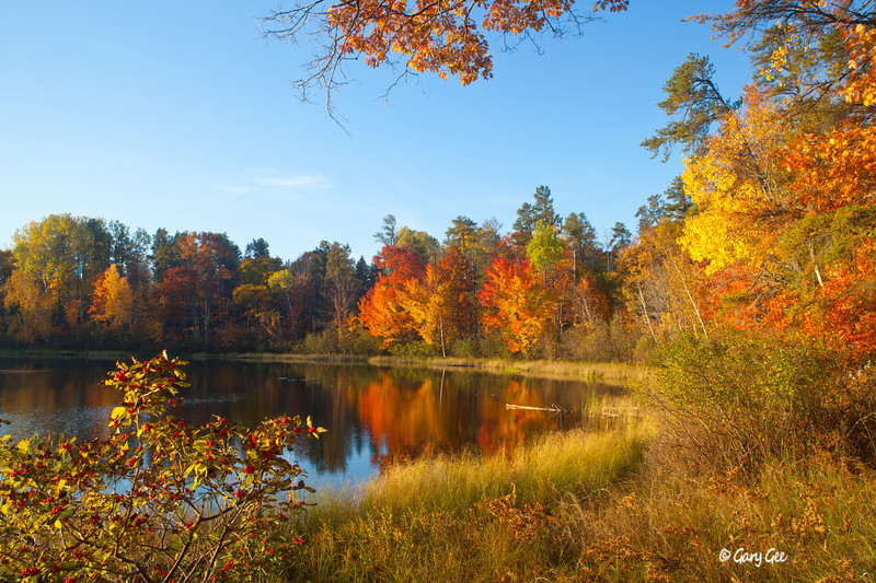 Town Corner Lake - Pigeon River Forest Country, Michigan - Fall Color