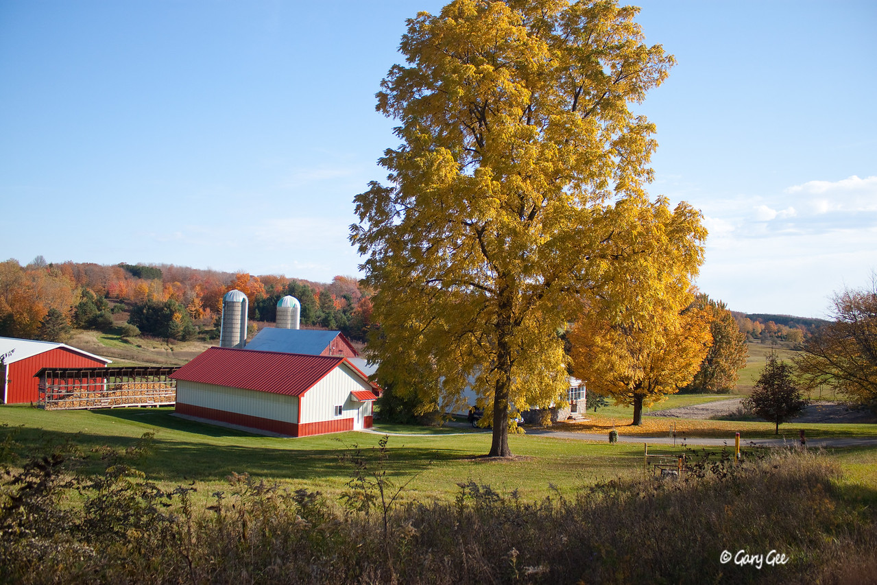 Fall Farm in Northern Michigan