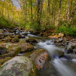 Roaring fork Nature Trail