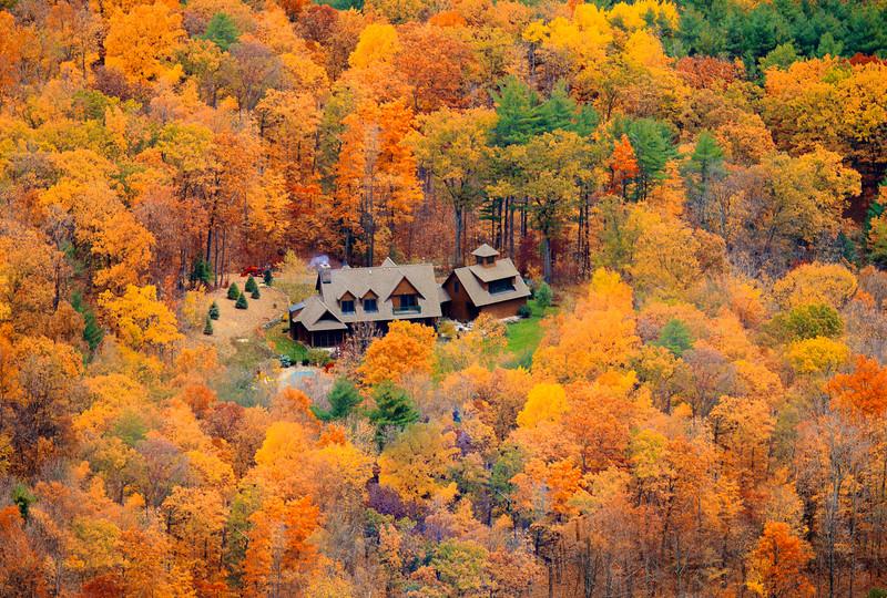 Bird's Eye View of the Autumn