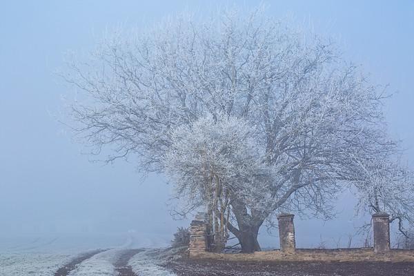 Natur, Felder, Wiesen, Landschaften