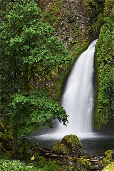 "<font color=""#FFFFFF"" size=""4"" face=""Verdana, Arial, Helvetica, sans-serif"">Where's Wanda?</font><br> Columbia River Gorge, Oregon"