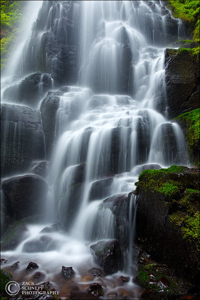"<font color=""#FFFFFF"" size=""4"" face=""Verdana, Arial, Helvetica, sans-serif"">Fairy Falls Study</font><br> Columbia River Gorge, Oregon"
