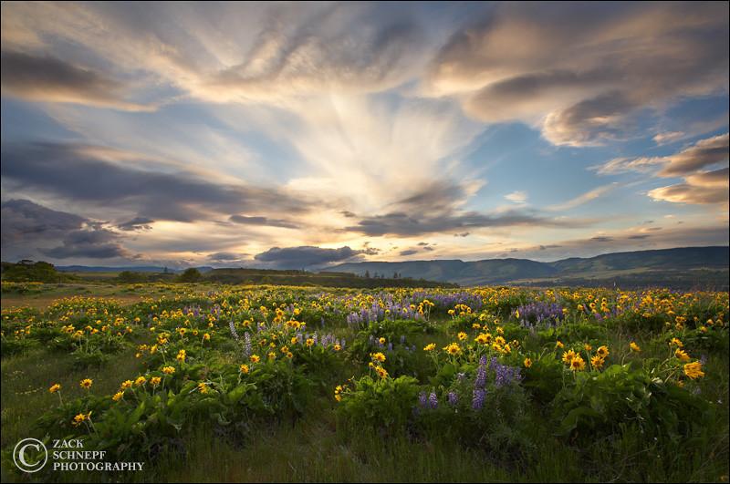 """<font color=""""#FFFFFF"""" size=""""4"""" face=""""Verdana, Arial, Helvetica, sans-serif"""">Rowena Sunset</font><br> Columbia River Gorge, Oregon"""