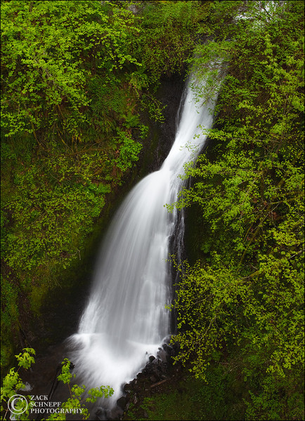 "<font color=""#FFFFFF"" size=""4"" face=""Verdana, Arial, Helvetica, sans-serif"">Shepard's Dell</font><br> Columbia River Gorge, Oregon"