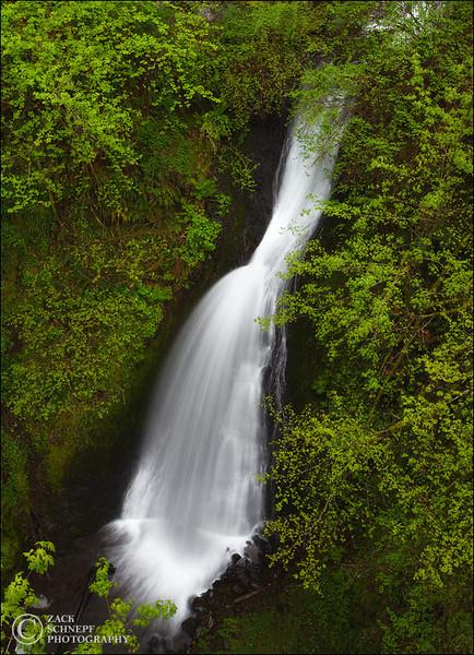 "<font color=""#FFFFFF"" size=""4"" face=""Verdana, Arial, Helvetica, sans-serif"">Shepard's Dell</font><br> Columbia River Gorge, Oregon"