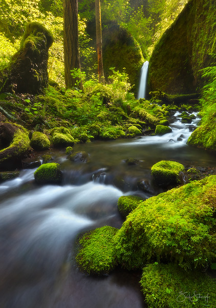 "<font color=""#FFFFFF"" size=""4"" face=""Verdana, Arial, Helvetica, sans-serif"">Paradise Falls Vertical</font><br> Columbia River Gorge, Oregon"