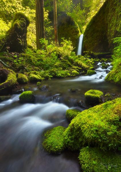 "<font color=""#FFFFFF"" size=""4"" face=""Verdana, Arial, Helvetica, sans-serif"">Paradise Falls Vertical</font><br> Columbia River Gorge, Oregon"