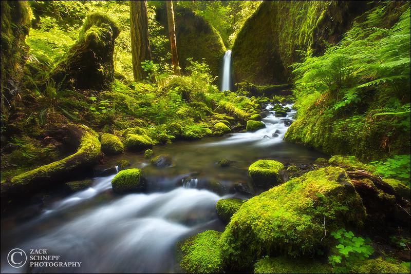 "<font color=""#FFFFFF"" size=""4"" face=""Verdana, Arial, Helvetica, sans-serif"">Paradise Falls Horizontal</font><br> Columbia River Gorge, Oregon"