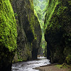 "<font color=""#FFFFFF"" size=""4"" face=""Verdana, Arial, Helvetica, sans-serif"">Oneonta Gorge</font><br> Columbia River Gorge, Oregon"