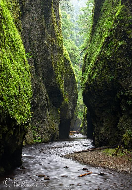 """<font color=""""#FFFFFF"""" size=""""4"""" face=""""Verdana, Arial, Helvetica, sans-serif"""">Oneonta Gorge</font><br> Columbia River Gorge, Oregon"""
