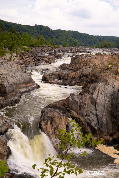 Great Falls in McLean, VA 8-2-20 by Annette Holloway Photogaphy