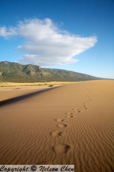 Sand_Dunes_096