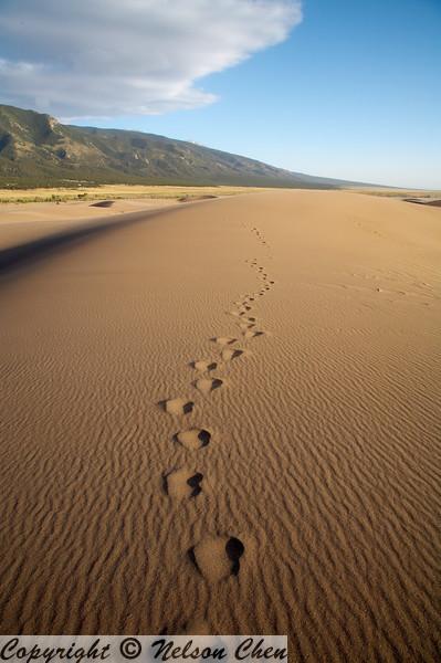 Sand_Dunes_094