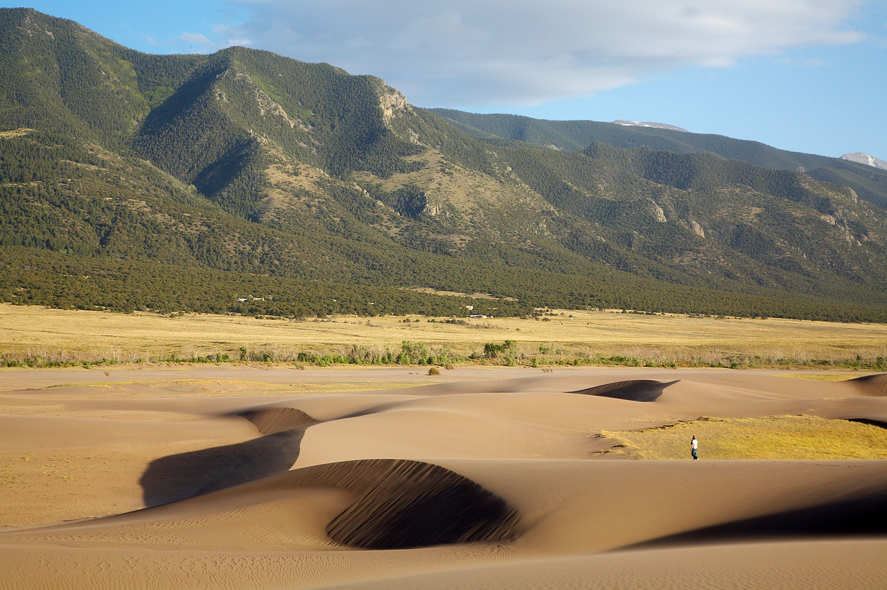 Sand_Dunes_088
