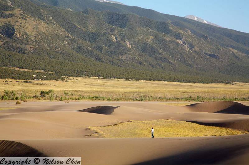 Sand_Dunes_087