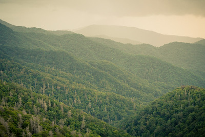 Great Smoky Mountains, TN