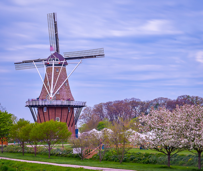 HOLLAND 6