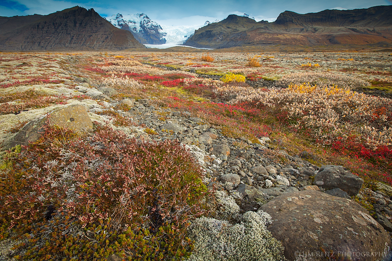 Autumn colors on the mossy plains in Skaftafell National Park, southern Iceland.