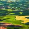 "<font color=""#FFFFFF"" size=""4"" face=""Verdana, Arial, Helvetica, sans-serif"">Palouse Hills</font><br> Palouse, Washington"