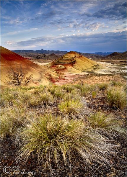 """<font color=""""#FFFFFF"""" size=""""4"""" face=""""Verdana, Arial, Helvetica, sans-serif"""">Prehistoric Painted Hills</font><br> Painted Hills, Oregon"""