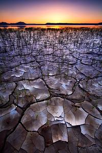 Alvord Mosaic Alvord Desert, Oregon