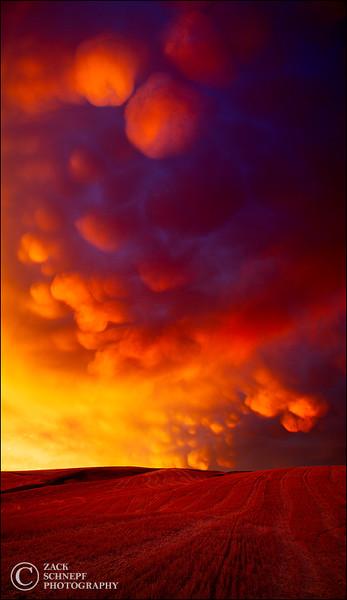 Mammatus Eruption
