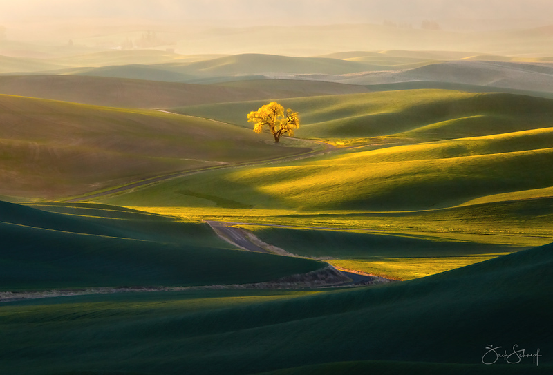 Road to Enlightenment Palouse, Washington