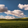 "<font color=""#FFFFFF"" size=""4"" face=""Verdana, Arial, Helvetica, sans-serif"">Peaceful Wheat Field</font><br> Palouse, Washington"