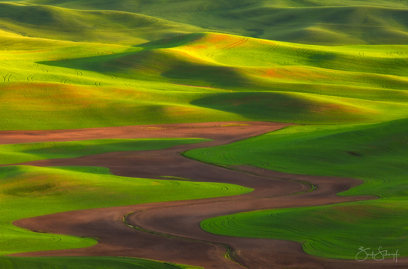 Palouse Zen Palouse, Washington