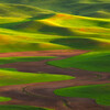"<font color=""#FFFFFF"" size=""4"" face=""Verdana, Arial, Helvetica, sans-serif"">Palouse Zen</font><br> Palouse, Washington"