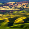 "<font color=""#FFFFFF"" size=""4"" face=""Verdana, Arial, Helvetica, sans-serif"">Palouse Velvet</font><br> Palouse, Washington"