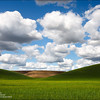 "<font color=""#FFFFFF"" size=""4"" face=""Verdana, Arial, Helvetica, sans-serif"">Palouse Heaven</font><br> Palouse, Washington"