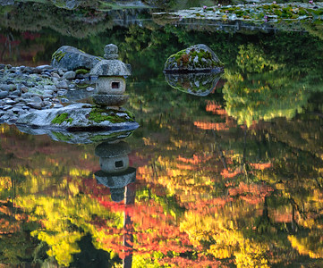 Fall colors reflected at the Seattle Japanese Garden.