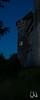 Zwergfledermäuse am Schloss Hohentübingen