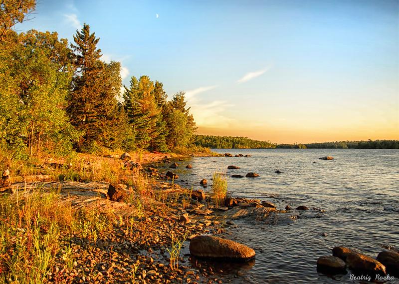 Morning sun at the lake
