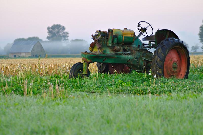 Resting on the farm<br /> Whatcom County, WA