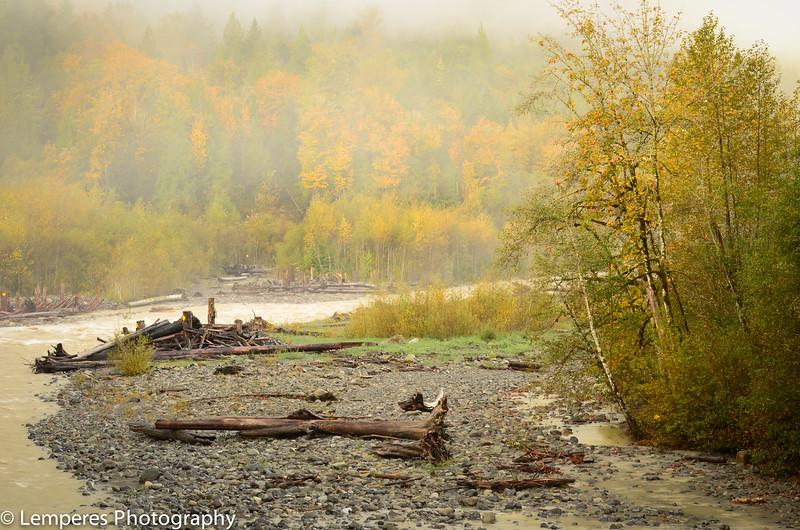 Nooksack River Colors<br /> Whatcom County