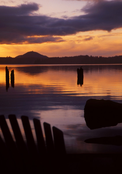 Dusky Refections<br /> Lake Quinault, WA