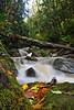 Oyster Creek Cascade<br /> Bellingham, WA