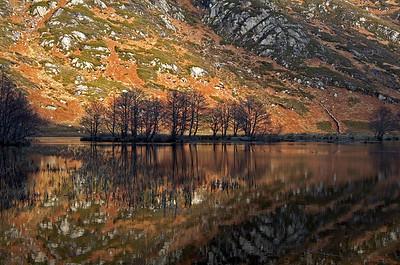 Loch Shiel Reflections - Highlands, Scotland